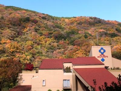 湯坂山の紅葉2014.jpg