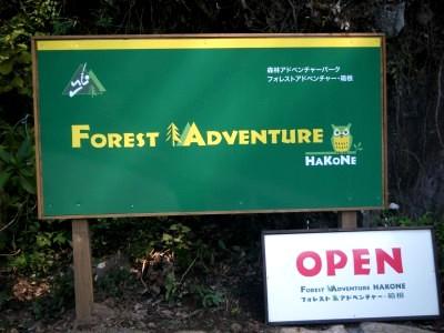 forestadventure.jpg