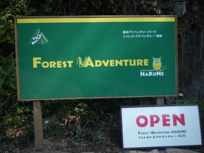 FOREST ADVENTURE.jpg