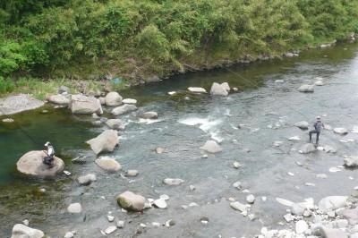 早川の鮎釣り2012.jpg