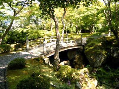 箱根美術館 庭園.jpg